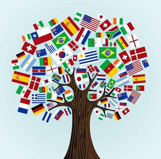 Attiva la procedura di registrazione per il Voucher Internazionalizzazione MISE 2015!