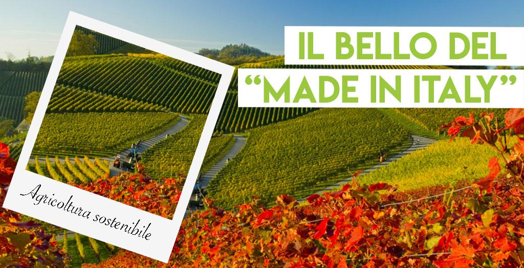 La sostenibilità agricola italiana è la migliore al mondo